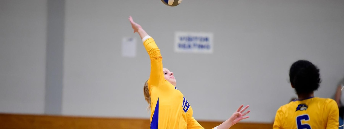 Goucher Women's Volleyball Tames Bears In Four Sets