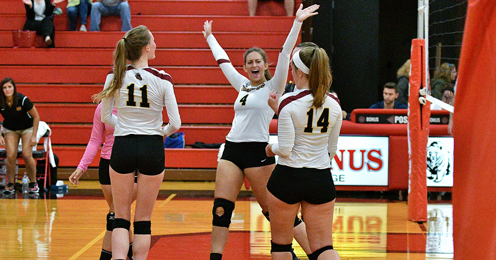 Volleyball Rallies Past Lions in Scavicchio's Debut