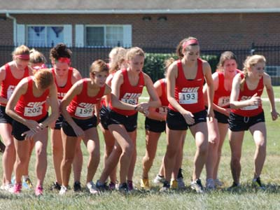 Cardinals earn All-Academic team honors from USTFCCCA
