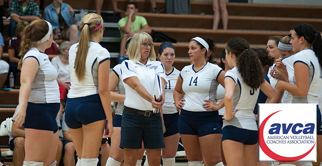 Hounds Earn AVCA Team Academic Award for 2013-14