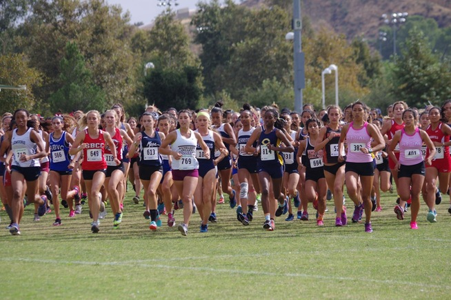 Falcons secure sixth place at SoCal Preview Meet
