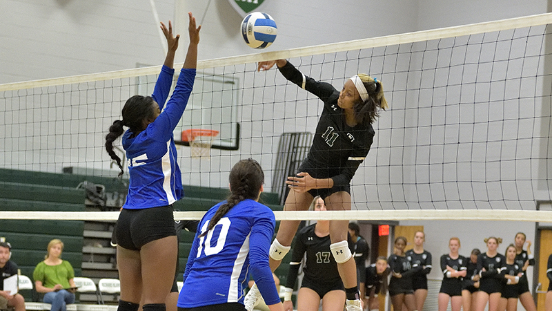 Volleyball Defeats Regent, Faces Tough NCAA Teams This Weekend