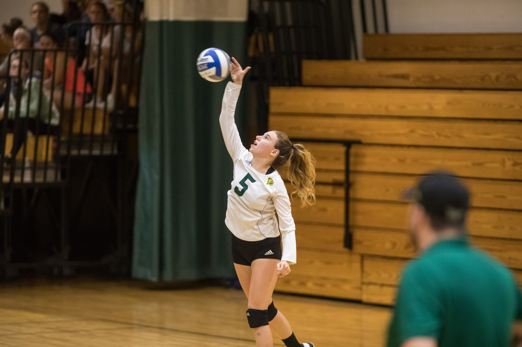 Falcons Clipped By Fisher In Three Sets