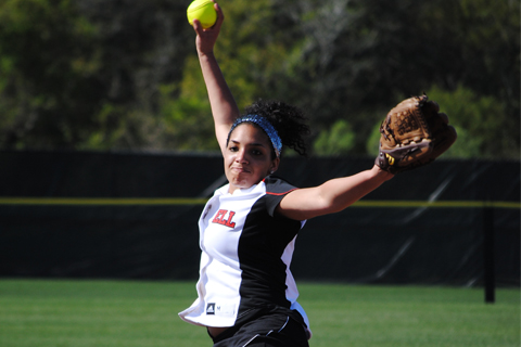 Softball Sweeps by Elms
