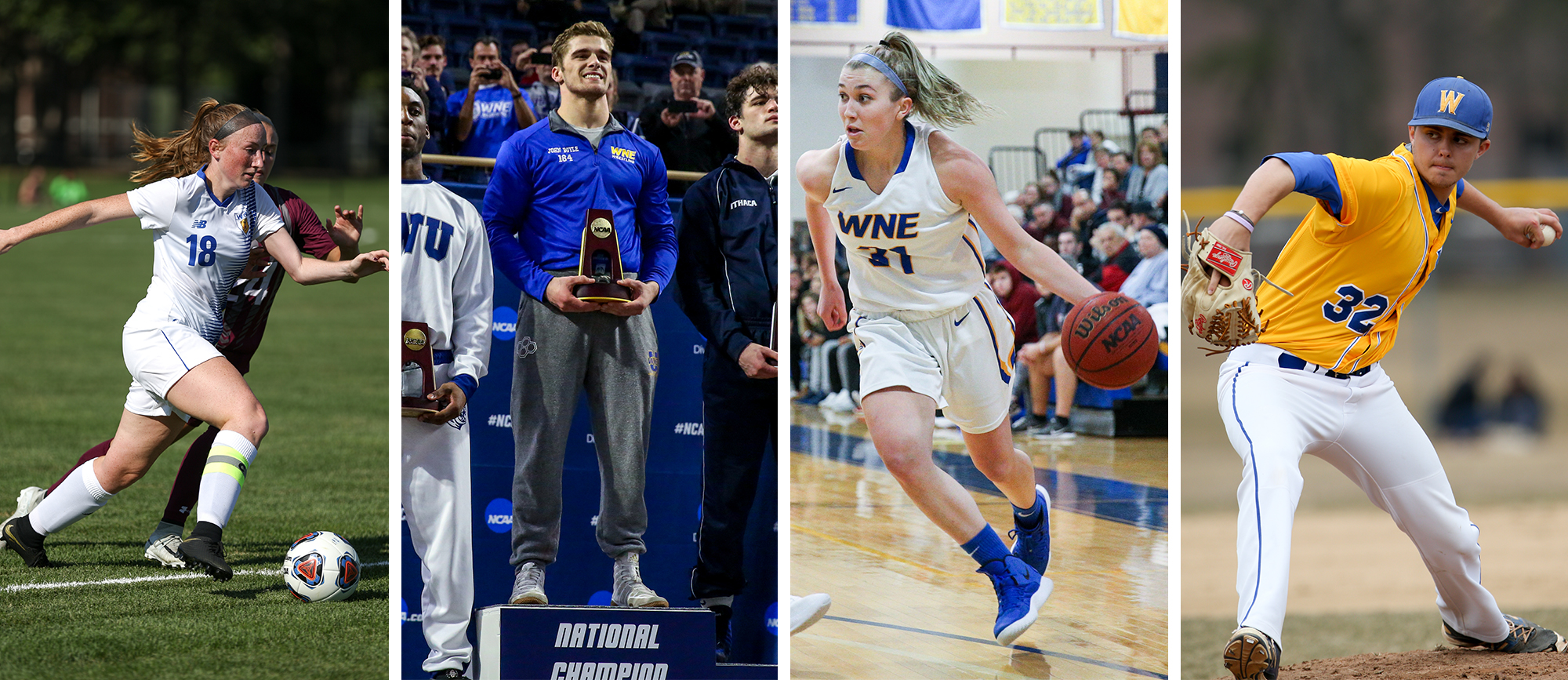 Western New England Announces 2018-19 Athletic Department Award Winners