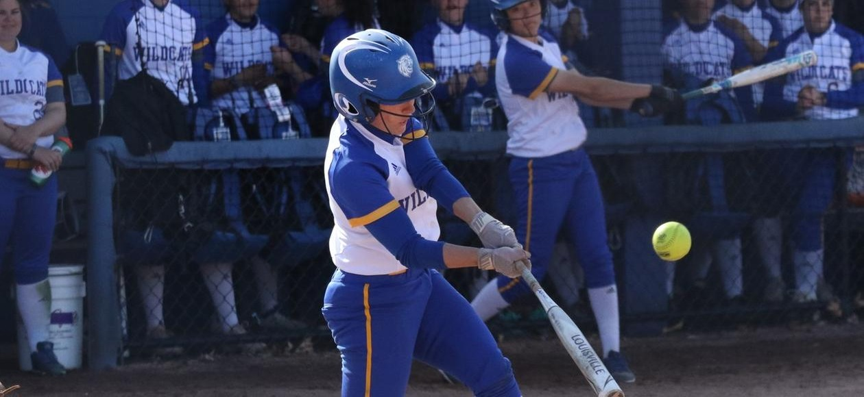 Softball Takes a Pair off Lasell
