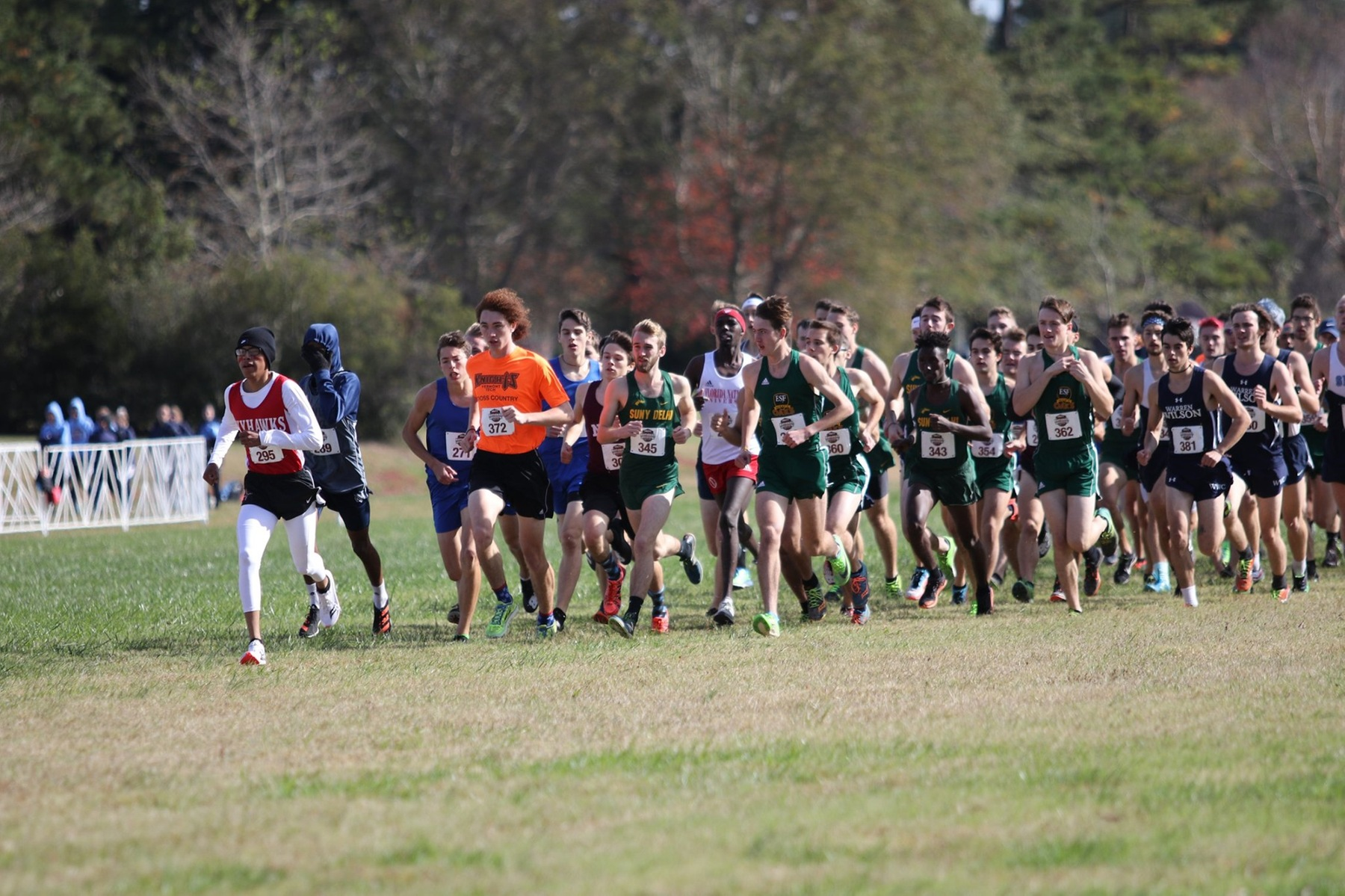 Men's Cross Country finish season with 11th place at USCAA Nationals