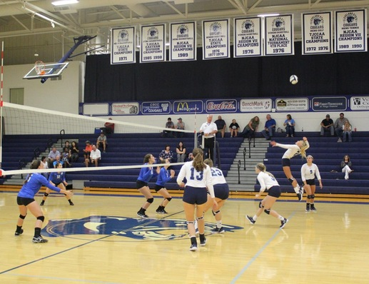 Lady Cougars Knock Off Covenant