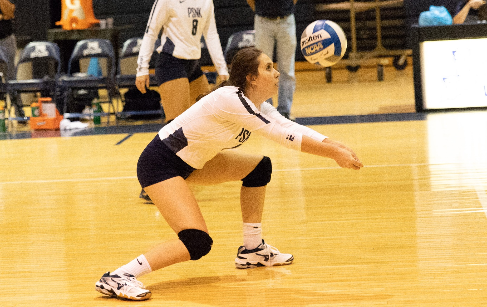 New Kensington Sweeps WCCC in Women's Volleyball