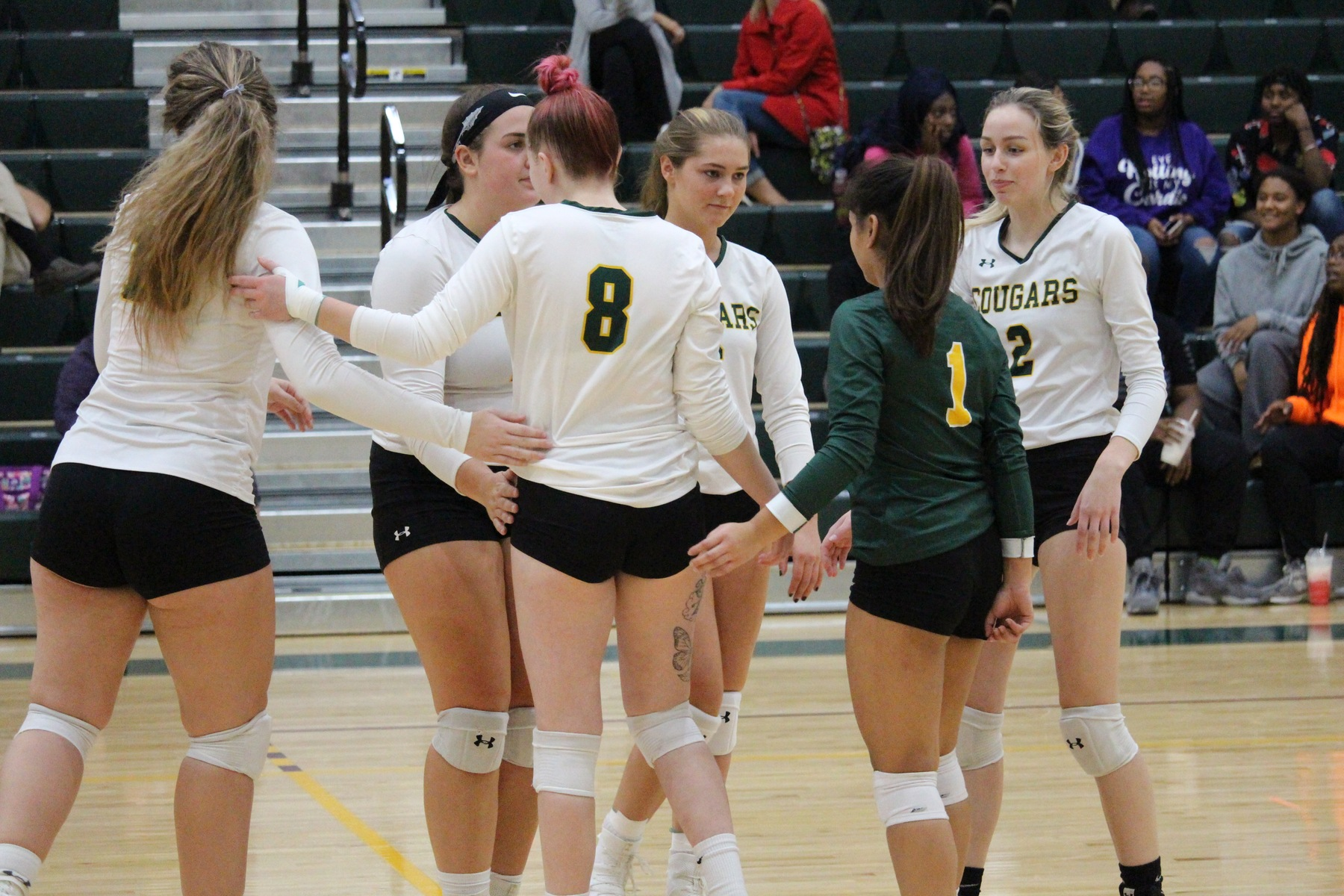 Jacobson Shines For FCC As Volleyball Sweeps CCBC Essex