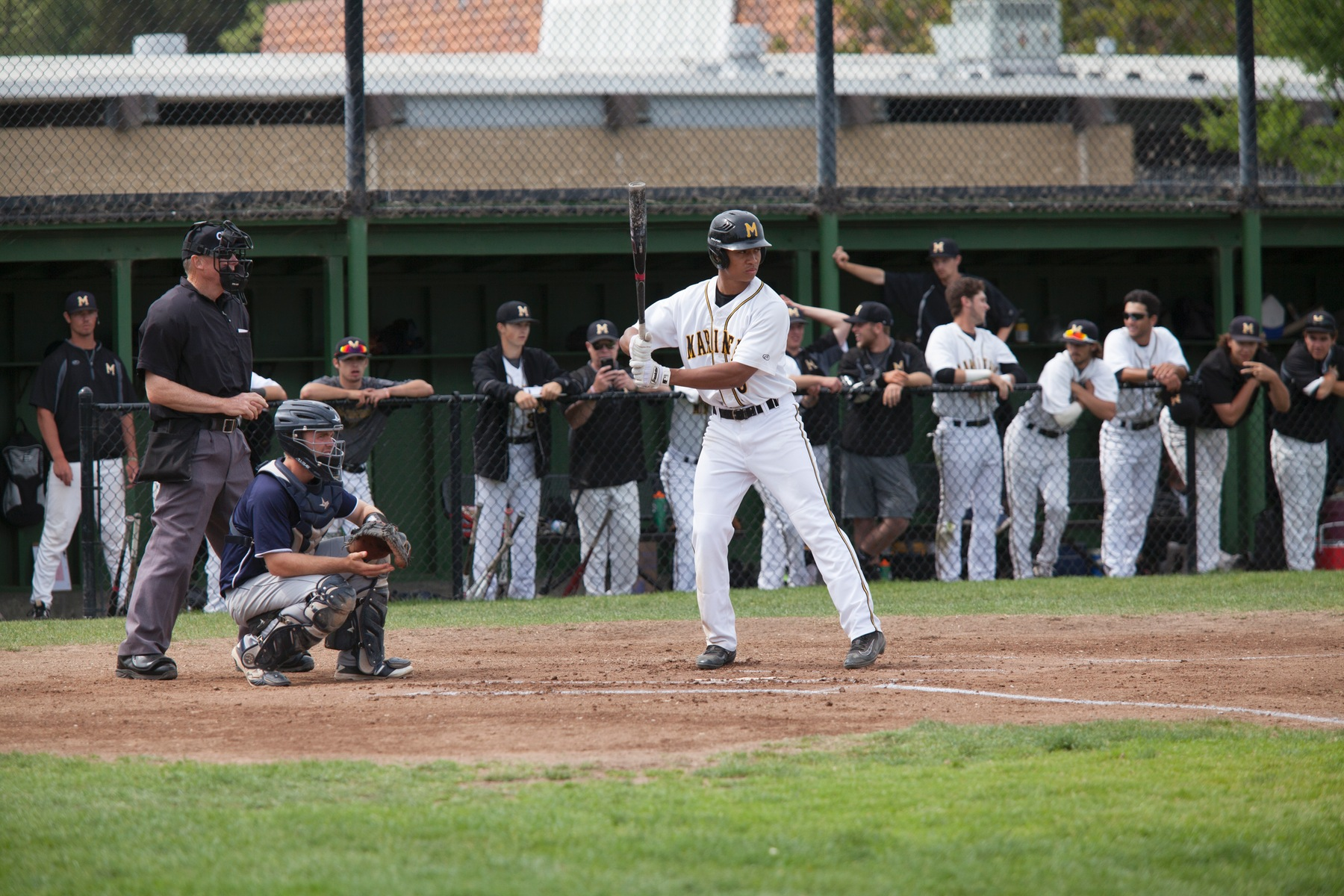 COM's Garihan Dominates & Bats Explode Against Solano College In 11-1 Victory