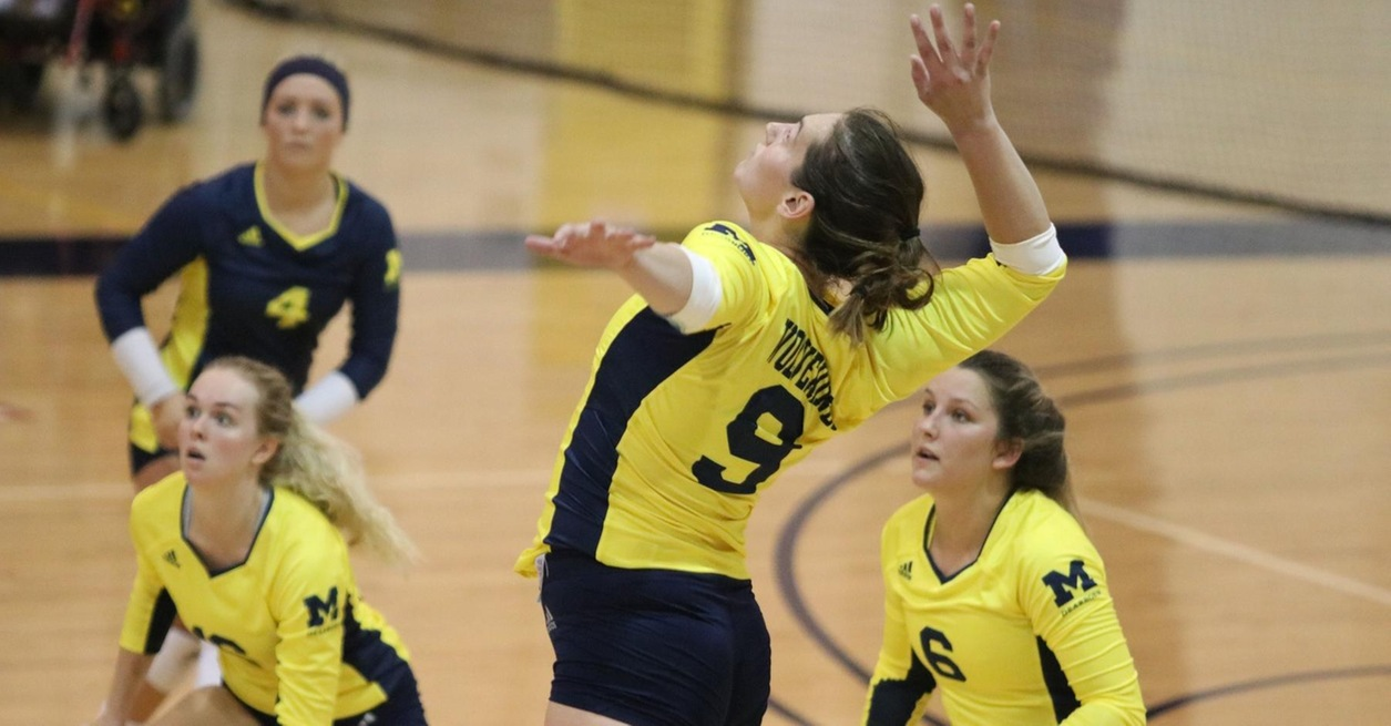 Wolverines Fall in Three Sets at LTU