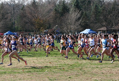 Women Place 46th at the NCAA Regional Championship