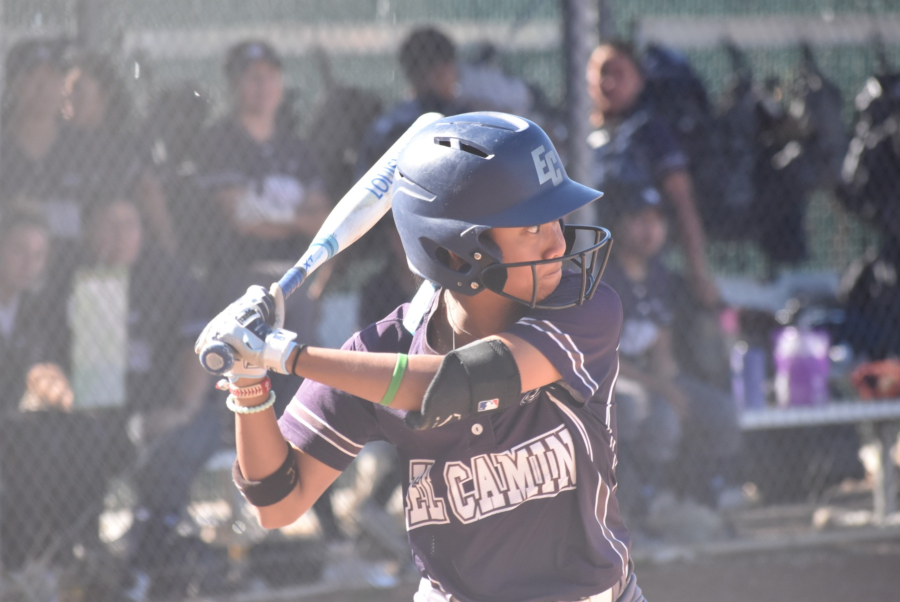 Softball Falls at Home to LA Mission