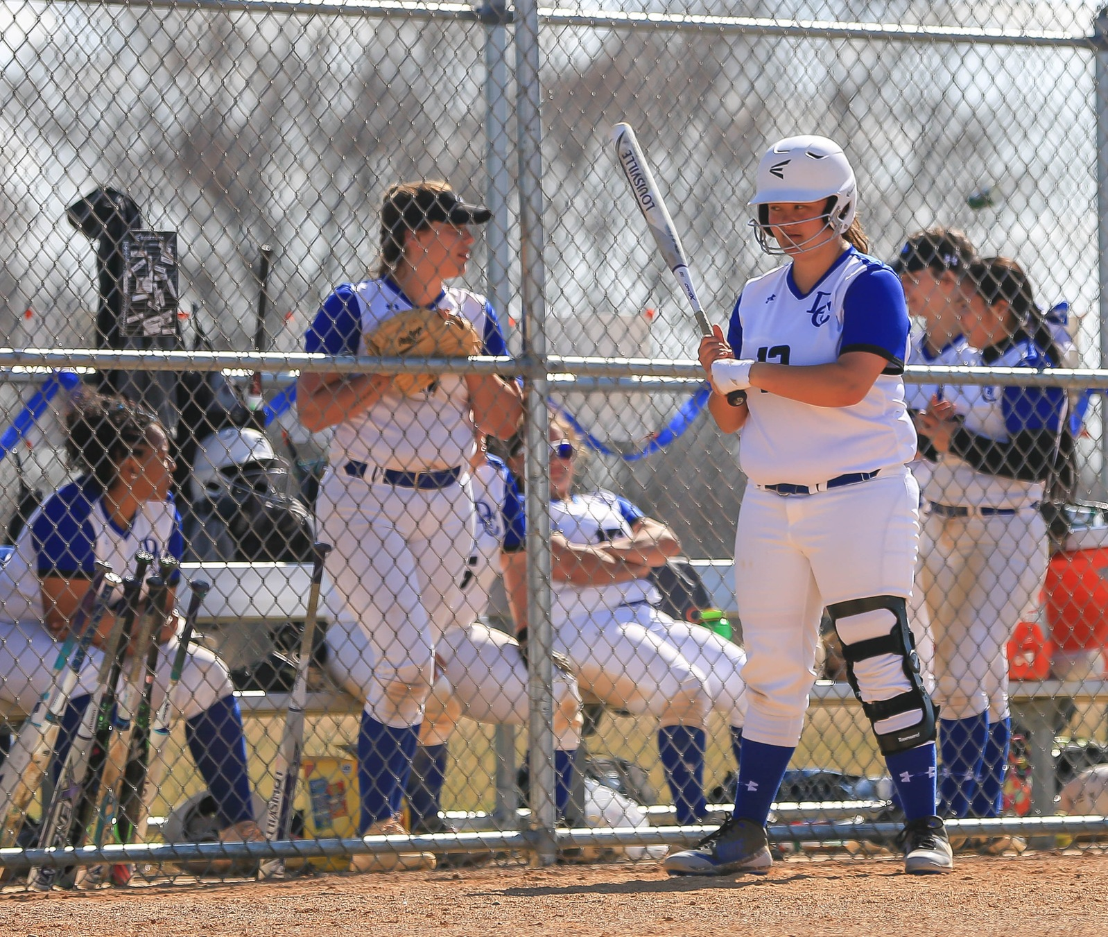 Softball fall to Dawson: Play Bay College Sunday to go to the championship