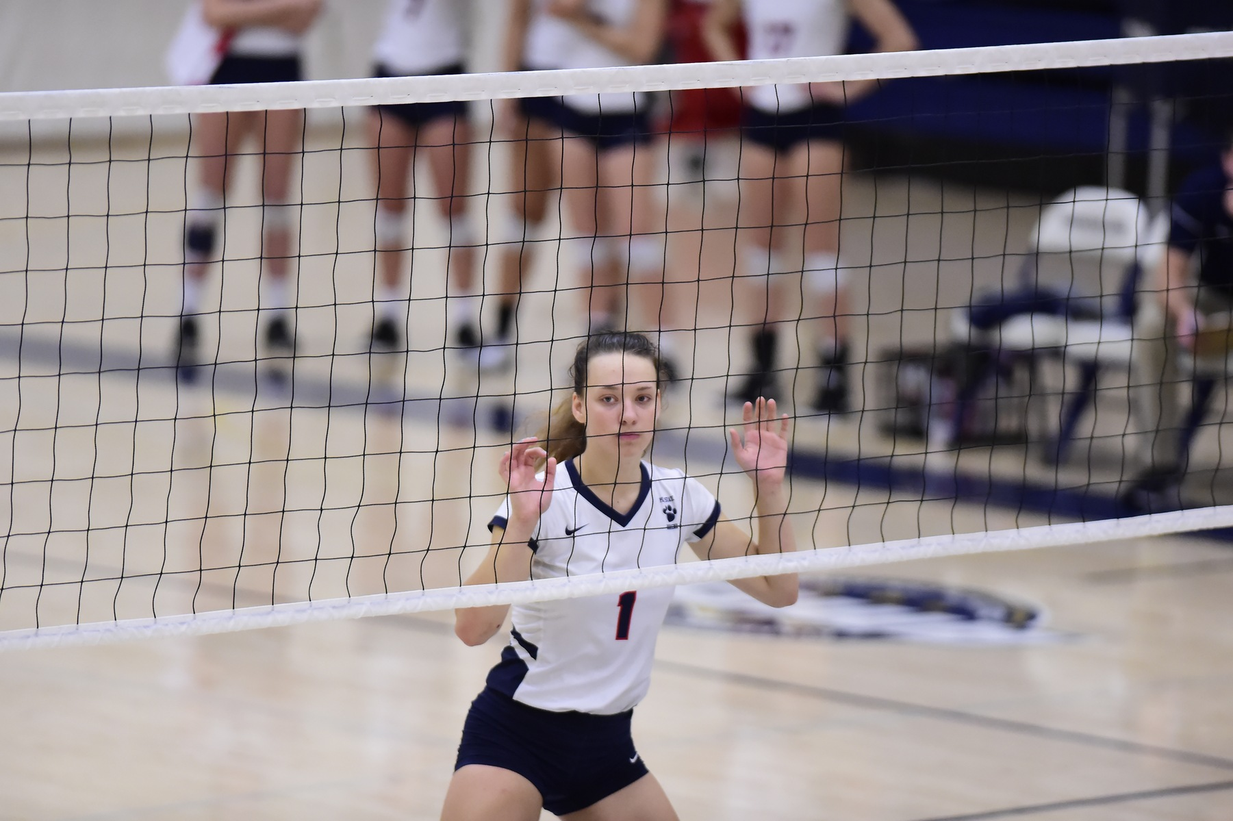 Behrend Volleyball Set to Compete at Wells Tournament