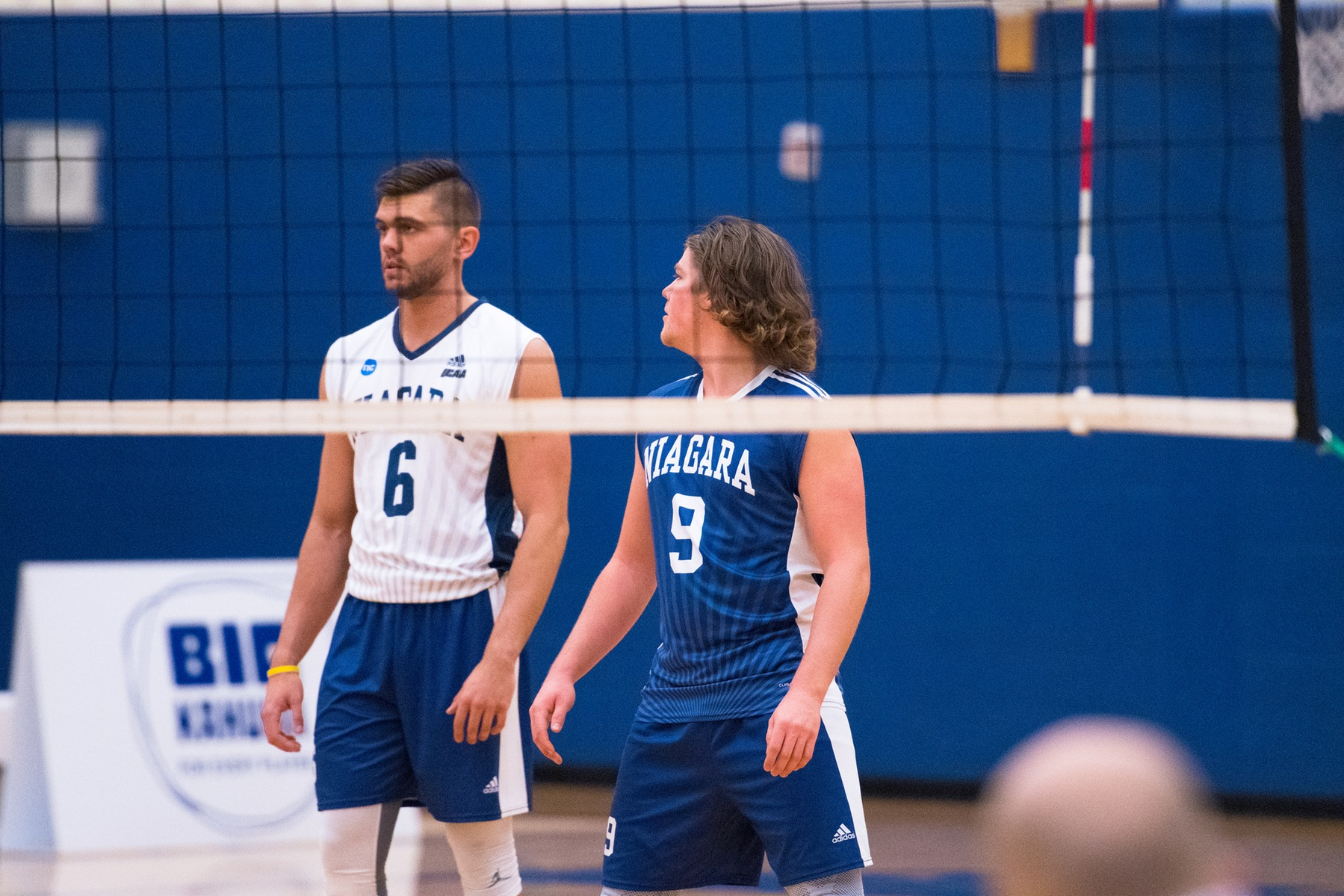 RECAP: Men's Volleyball fall to Mountaineers