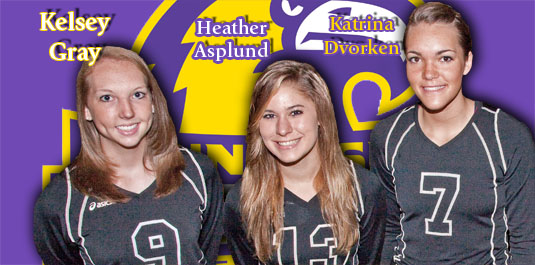 Defending champ volleyball team adds three signees to '09 roster