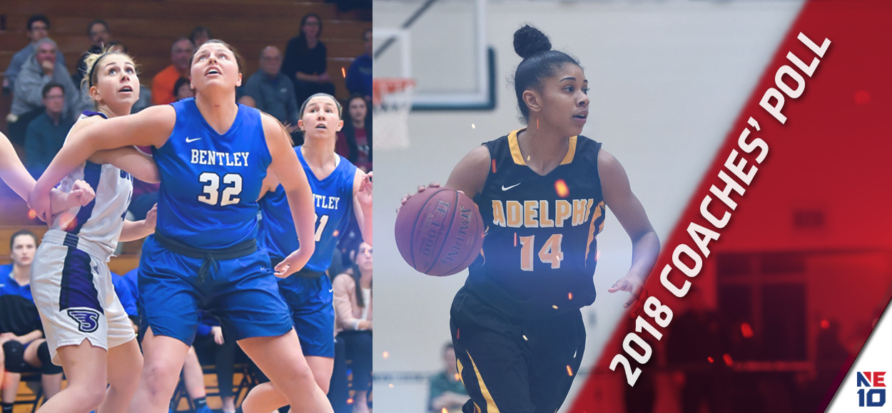 Bentley, Adelphi Sit on Top in NE10 Women's Basketball Coaches' Poll