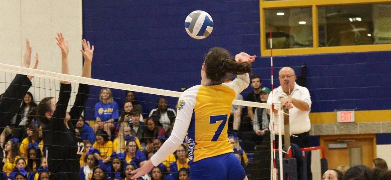No. 23 Women's Volleyball Blanks Regis, 3-0