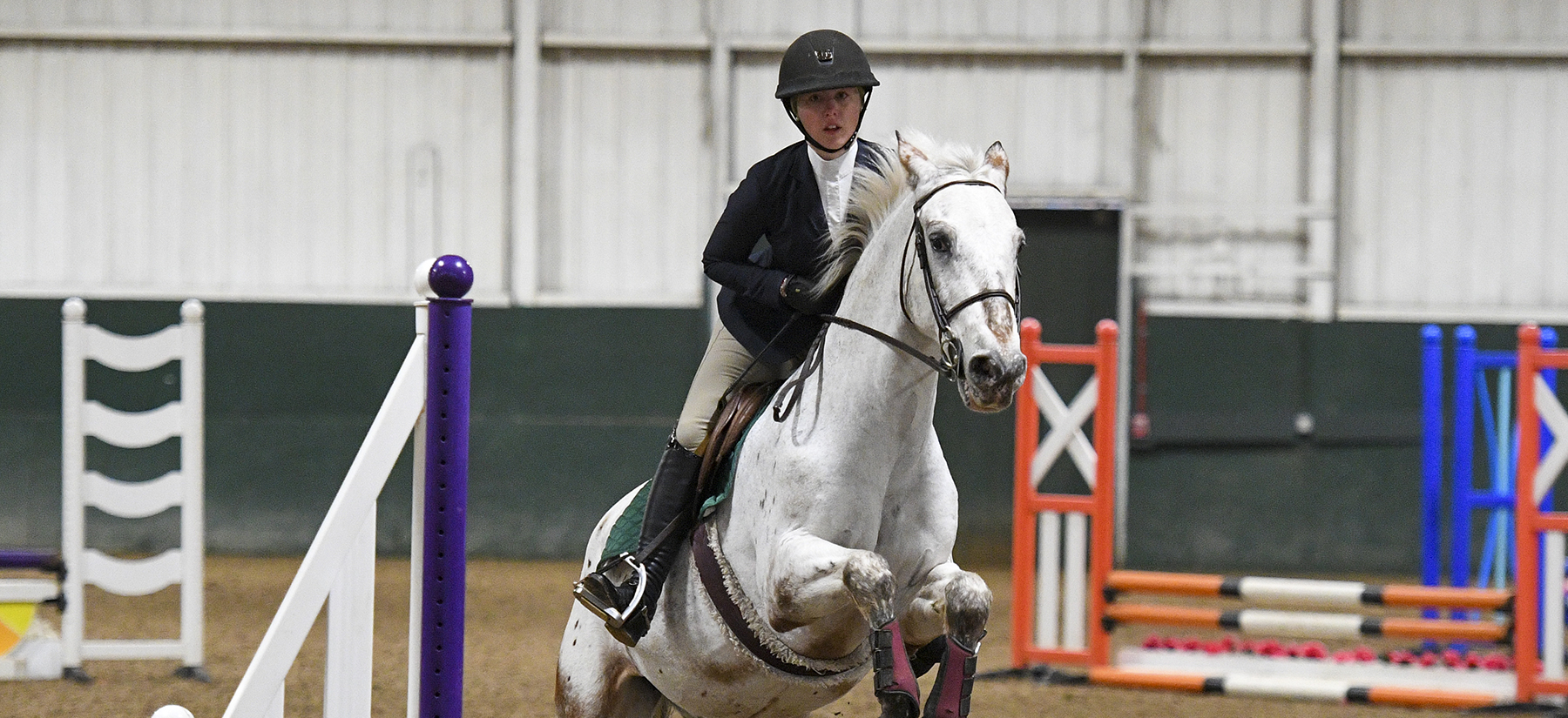 Equestrian Takes Second At Home Show