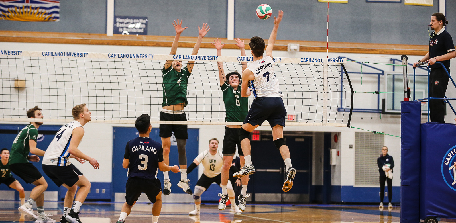 Blues persevere in five sets