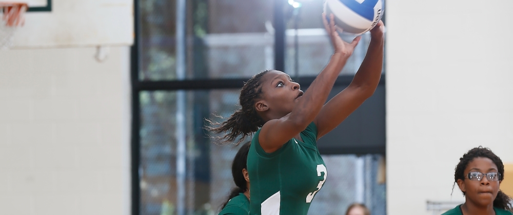 Gators Volleyball Splits Double Header