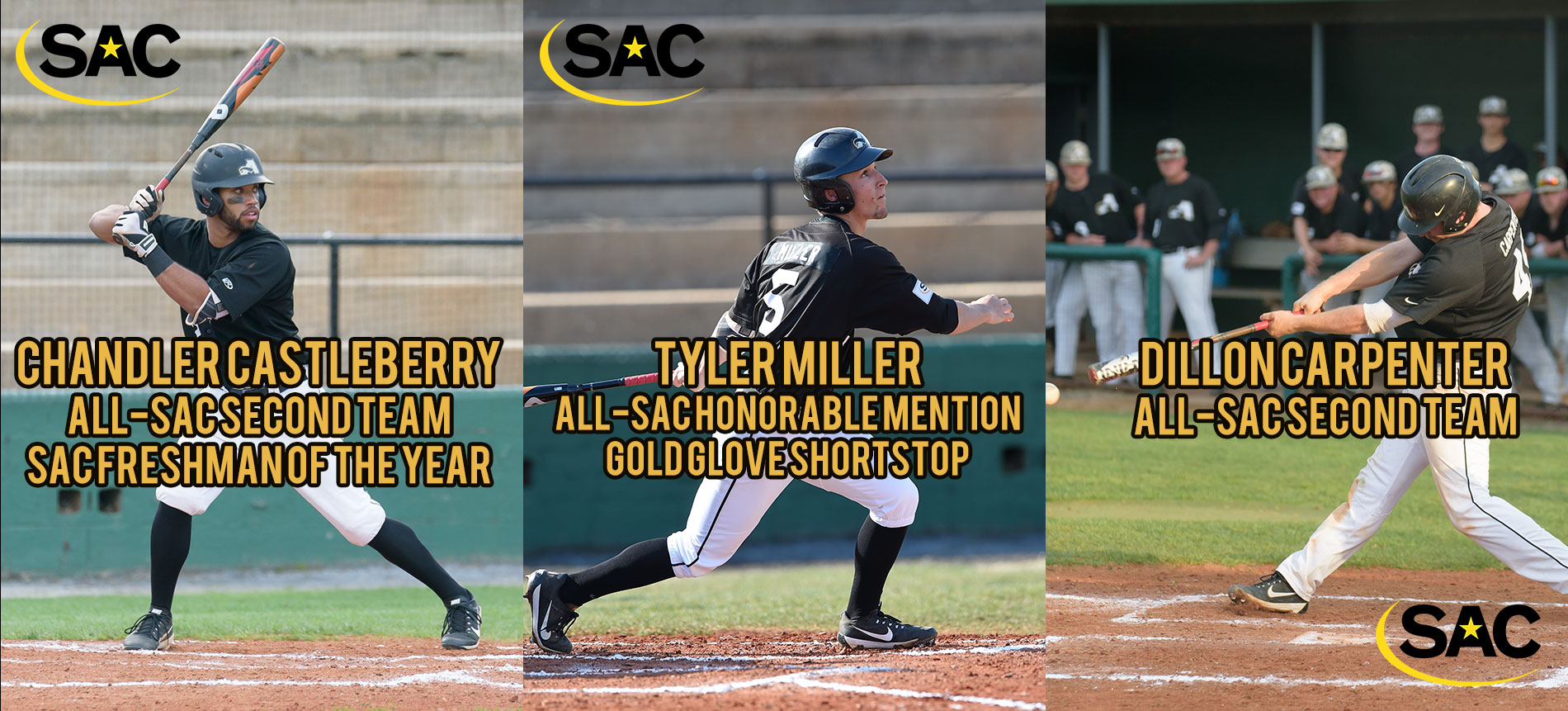 Carpenter, Castleberry and Miller Earn Postseason Baseball Honors