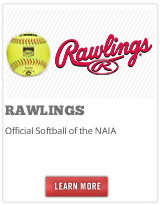 Rawlings softball