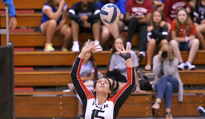 In two wins, Nicky Pio totaled 49 assists, along with 14 digs, eight kills, five blocks, and three aces. (Photo by Tom Hagerty, Polk State.)