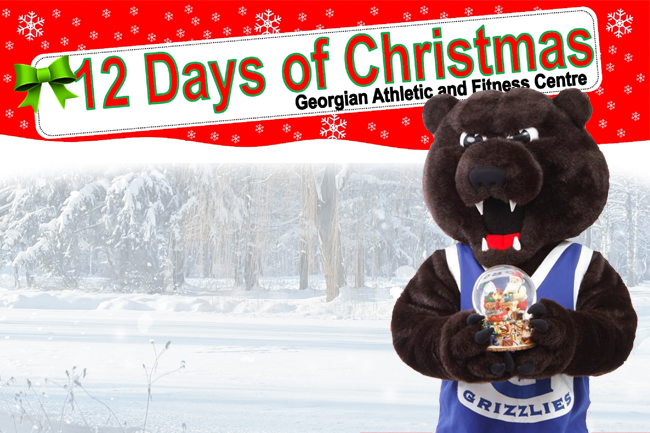 THE 12 DAYS OF CHRISTMAS IS BACK AT THE FITNESS CENTRE!