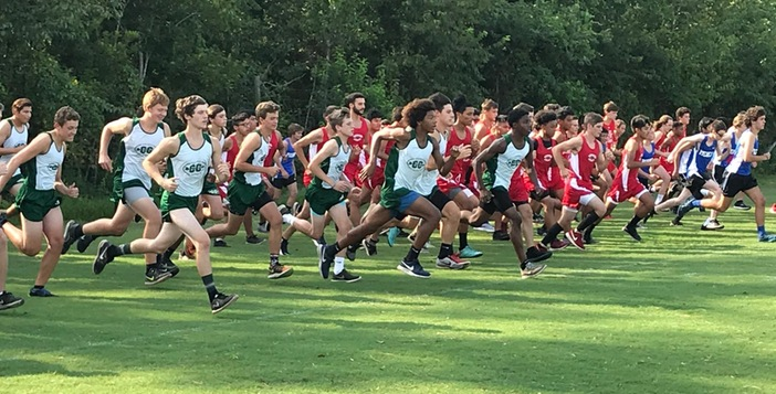 Gators Host Big Cross Country Match
