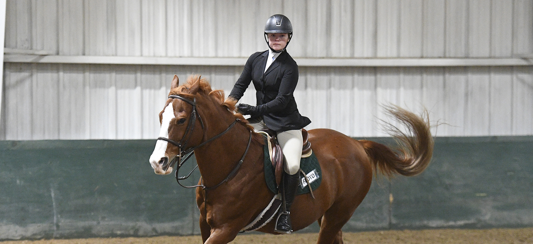 Equestrian Ties for High Point Team at Trinity