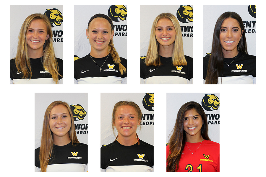 Seven Wentworth women's soccer players were recognized by the CCC, including offensive player of the year Emily Richard, defensive player of the year Mary Pastorelli, and rookie of the year Sidney Brogan