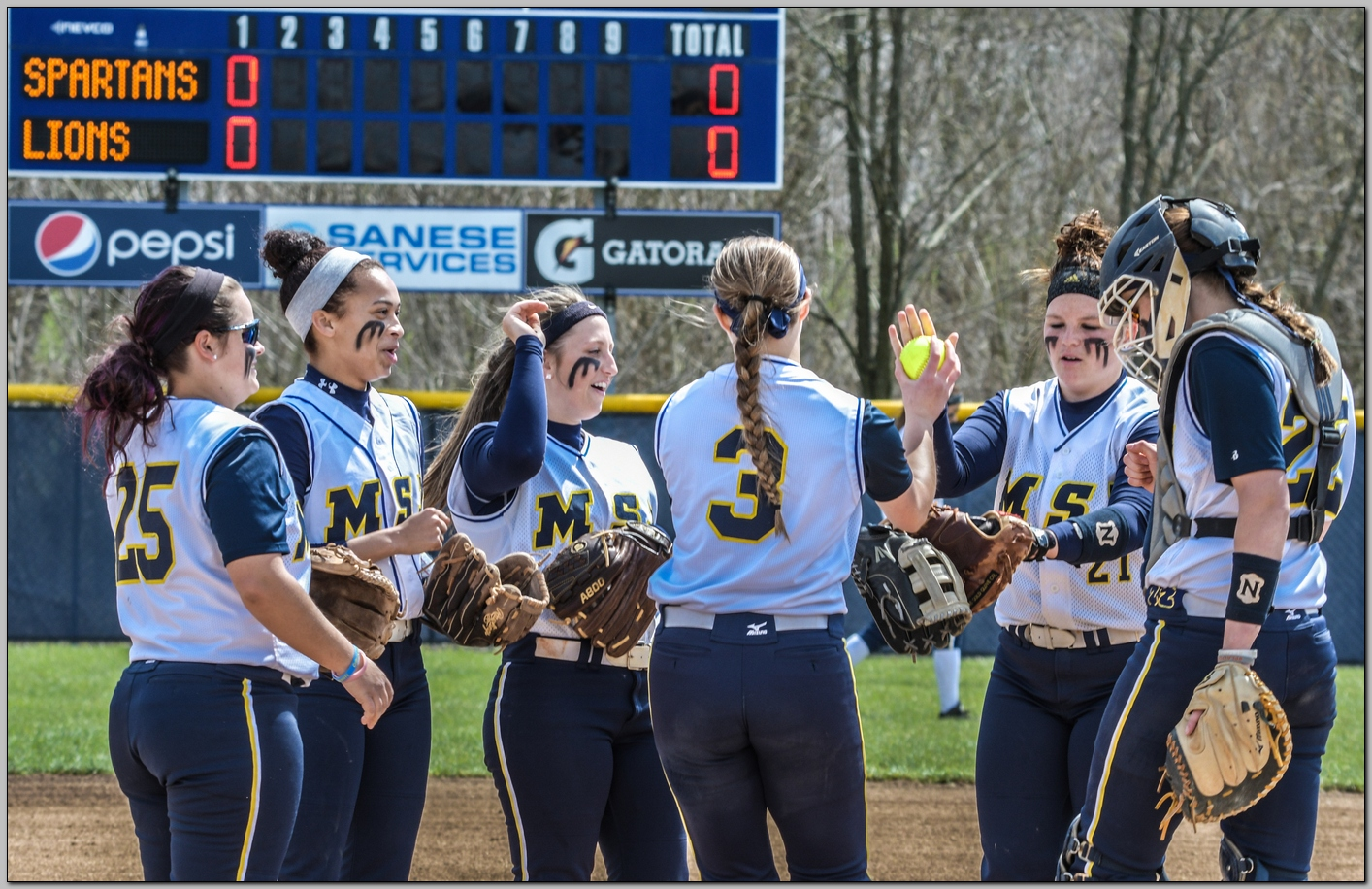 Softball season comes to an end in HCAC tournament semi-finals