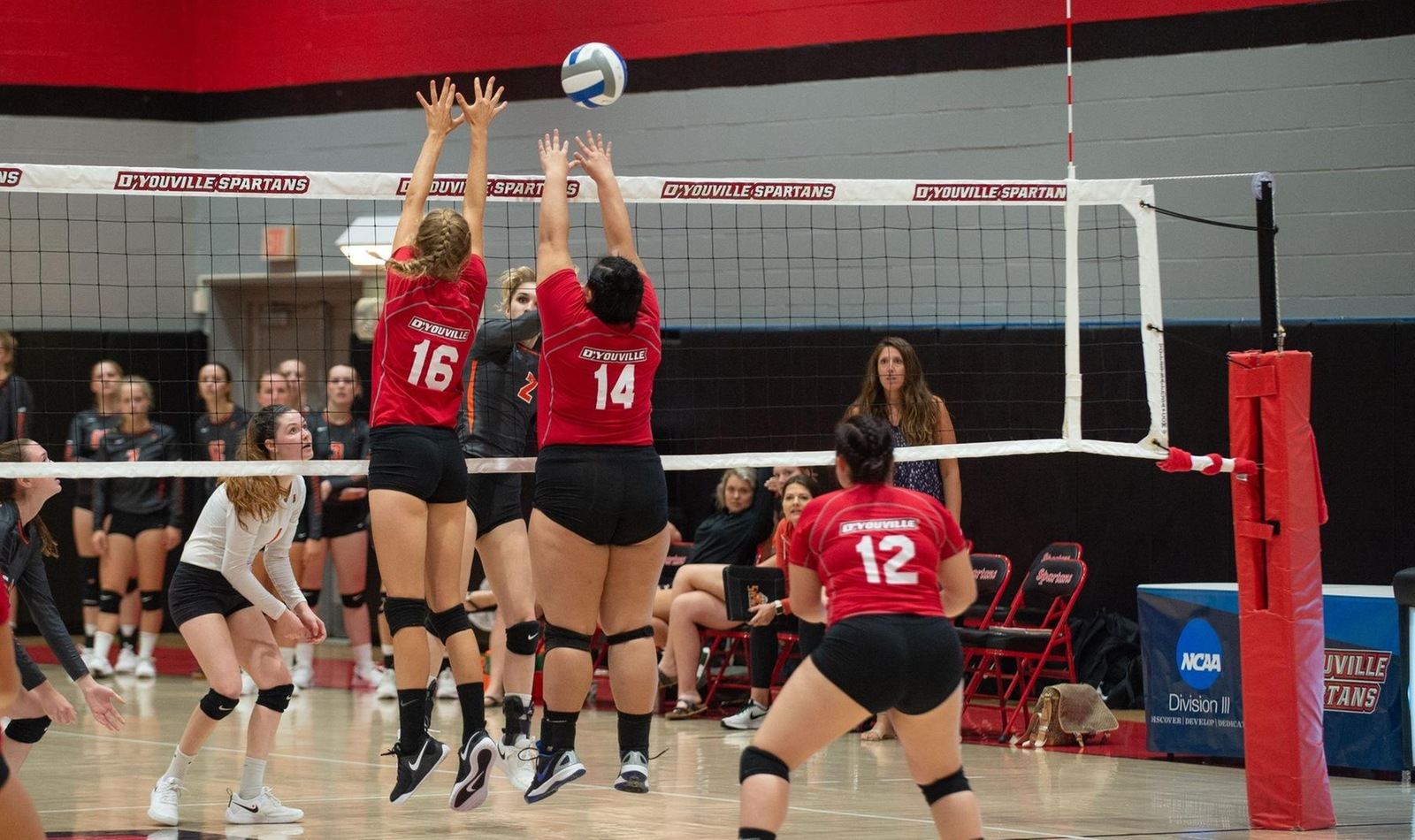 D'Youville Drops Home Opener to Buff State