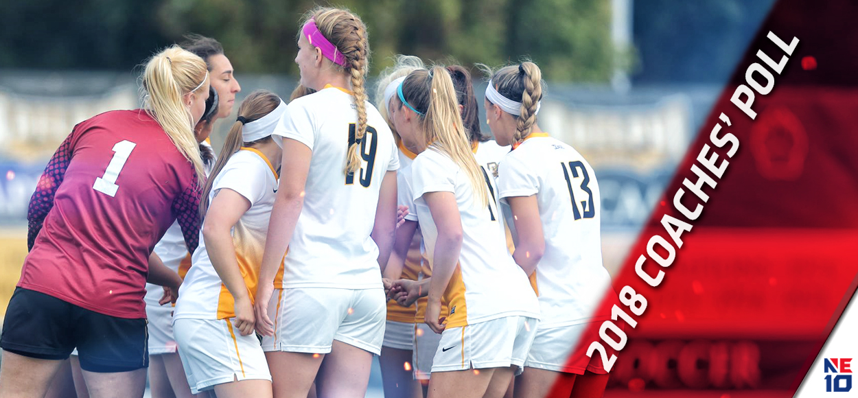 Adelphi Picked by Conference Coaches to Take Home 2018 NE10 Women's Soccer Title