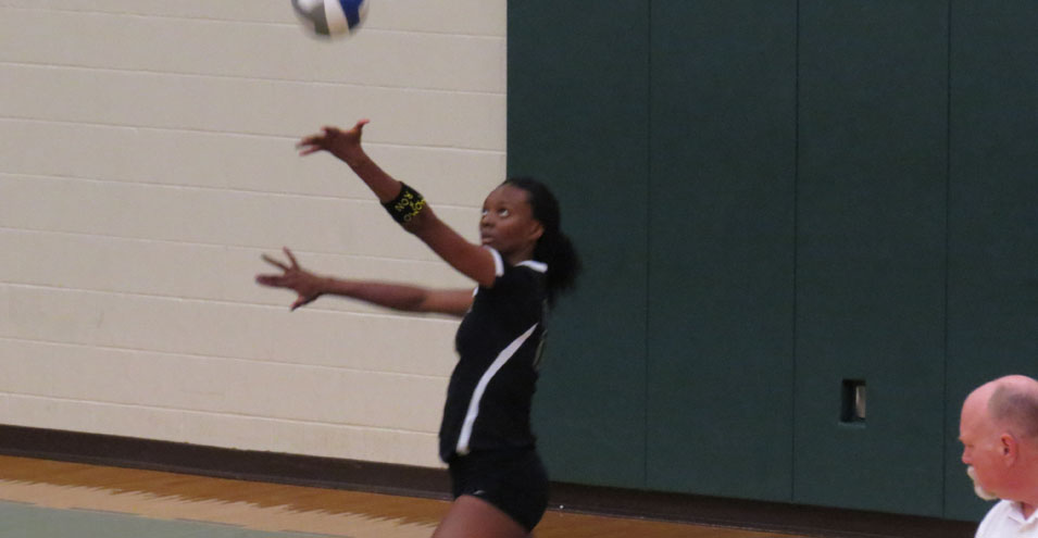 Storm Bests Ohio Dominican in Straight Sets