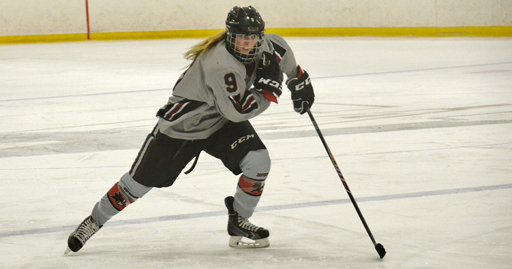 Women's Ice Hockey Stopped at Saint Anselm, 4-1