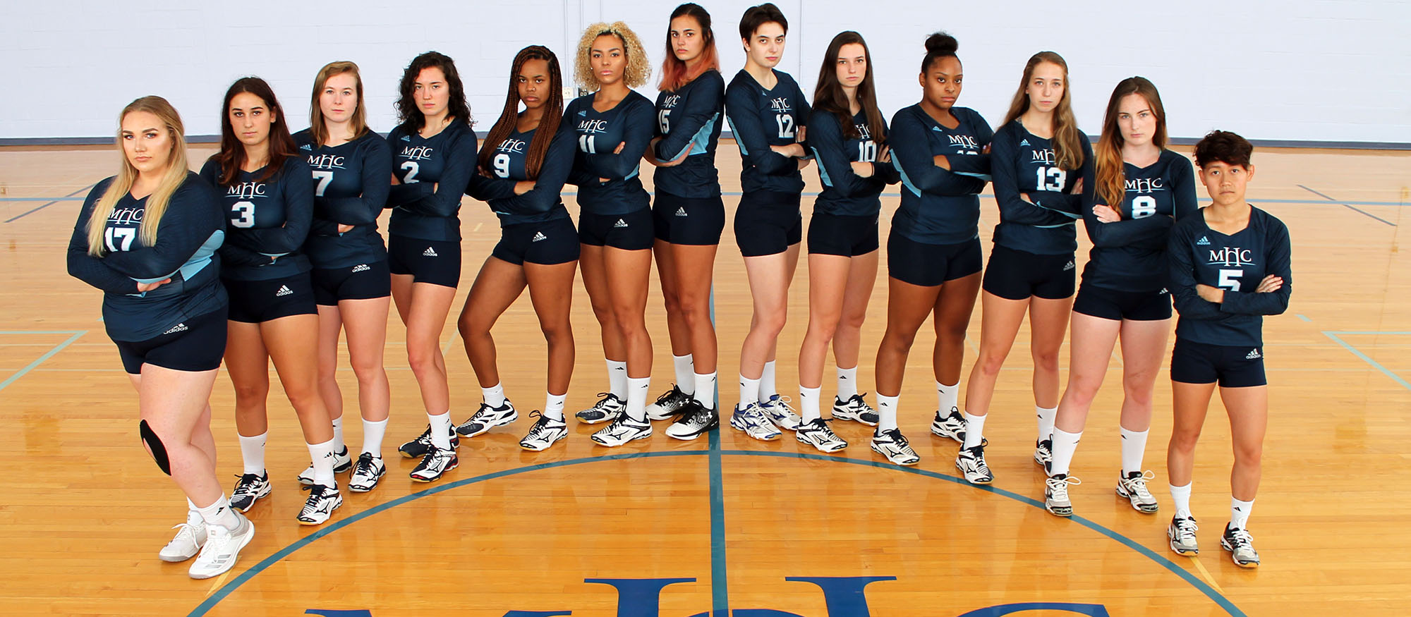 Photo of the 2018 Lyons Volleyball Team