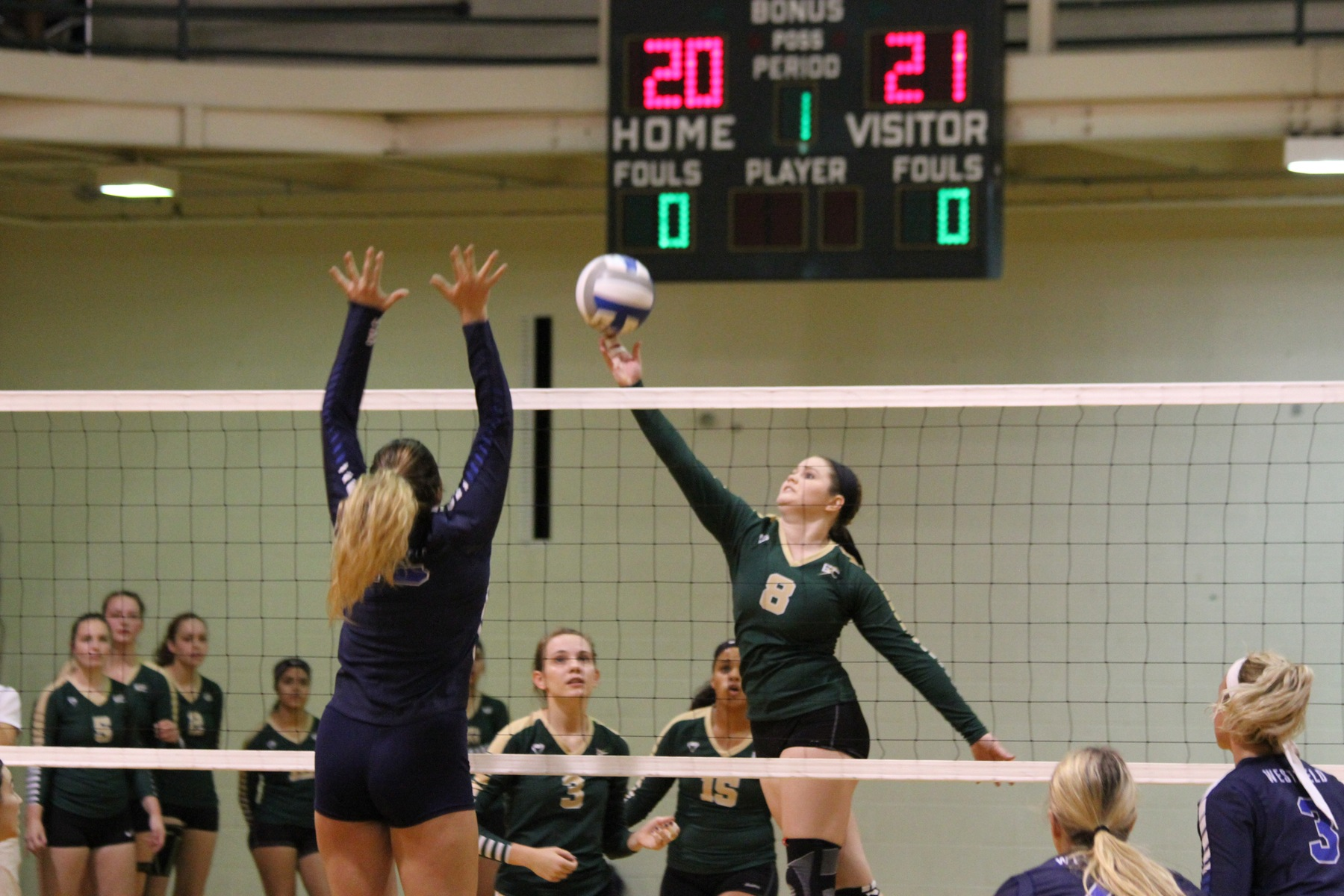 Women's Volleyball Clips Becker In Straight Sets