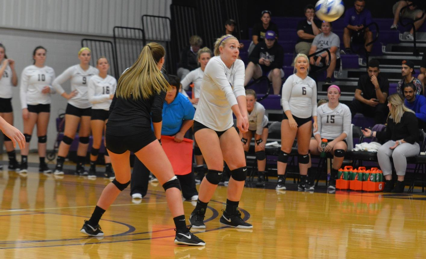 Volleyball Splits on Opening Day of the North Park Invitational