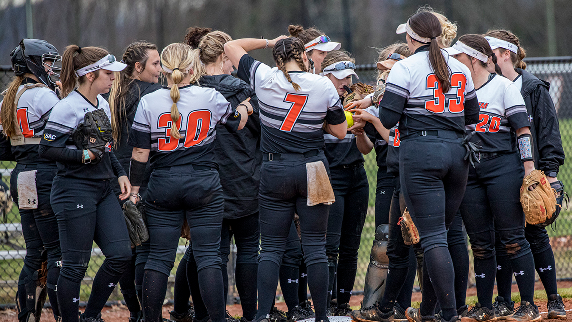 Softball Rides Winning Streak into Homestand