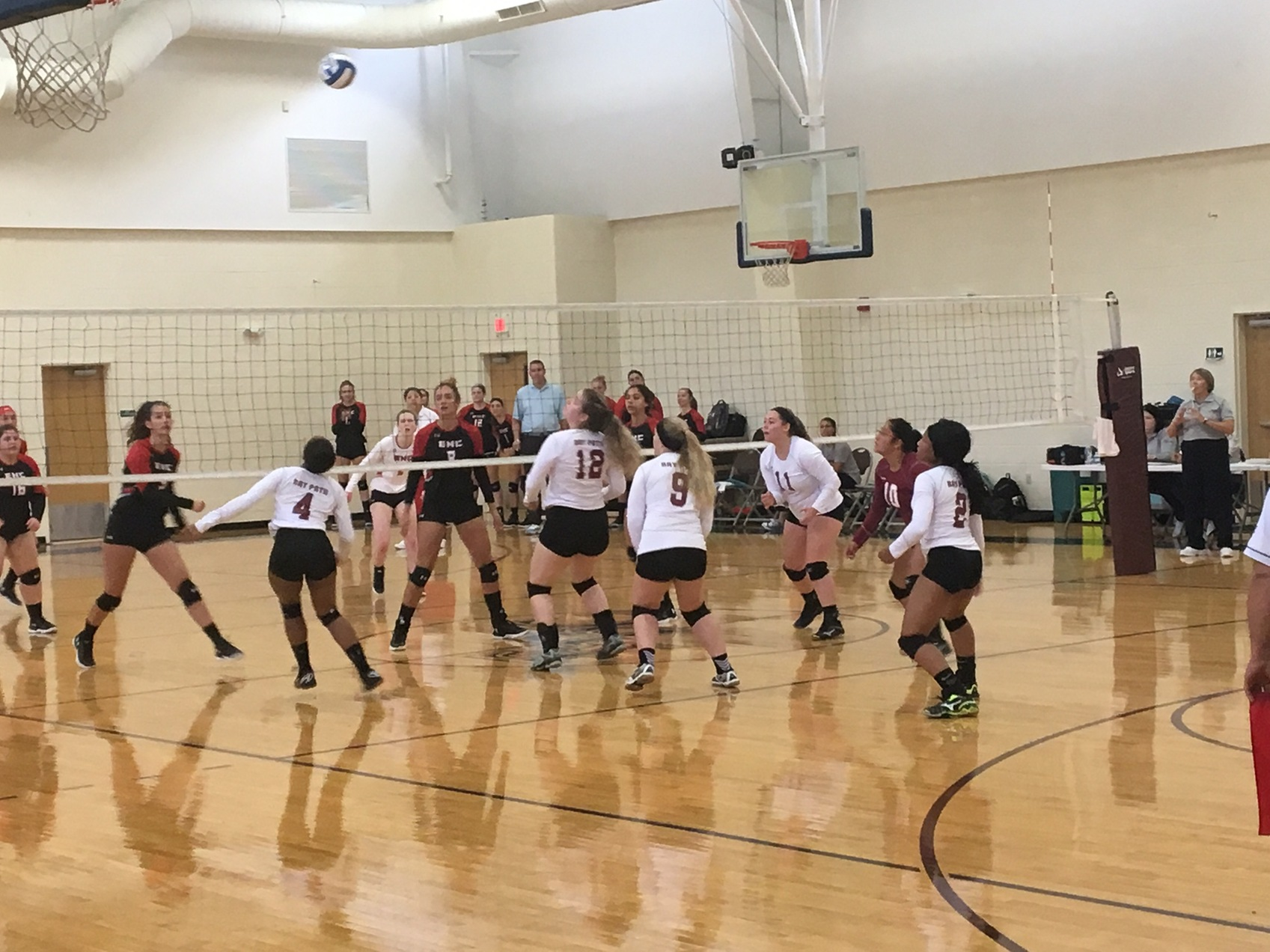 Bay Path Wildcats Fall 3-1 to Becker Hawks