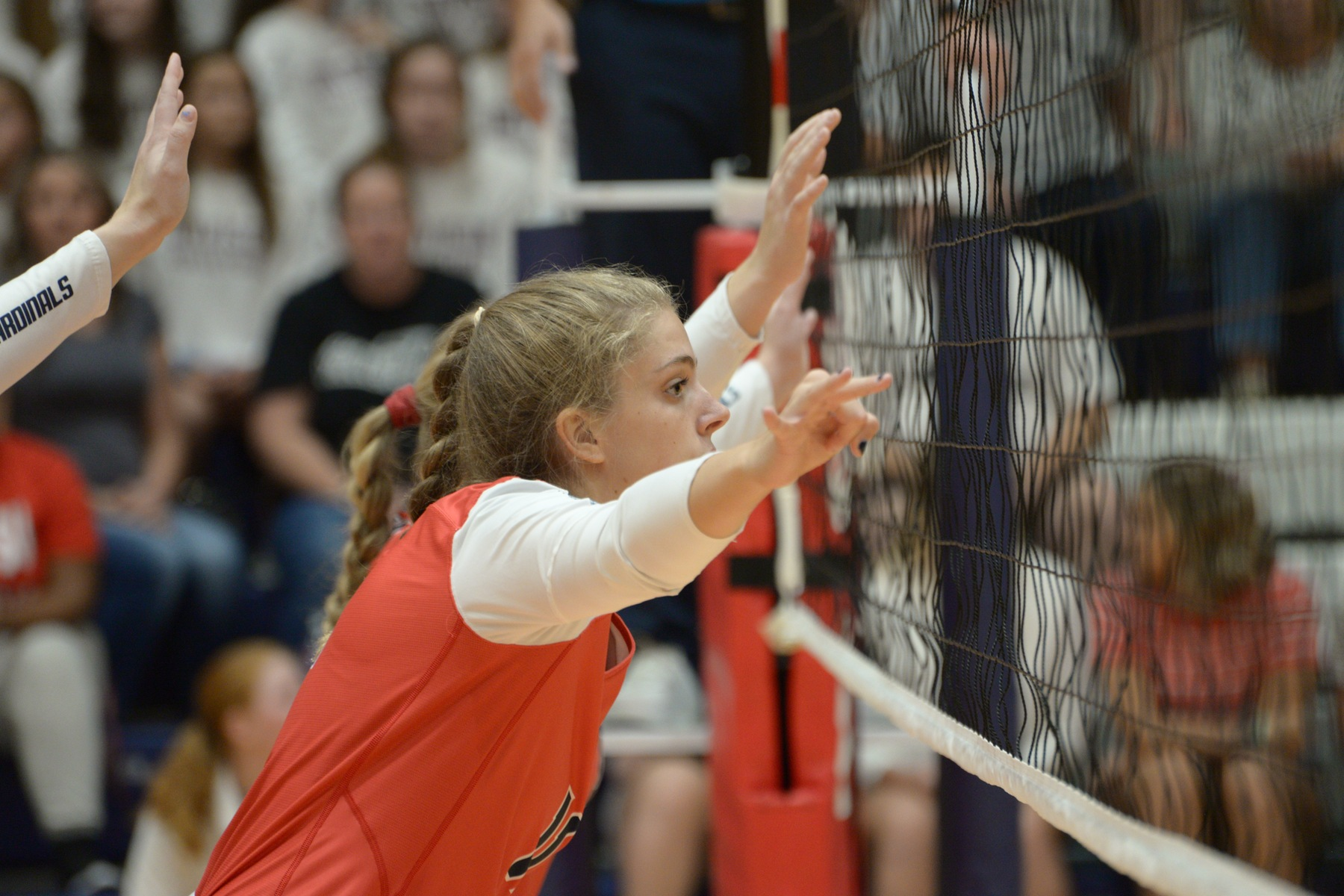 Cardinals fall to Lakers in five sets