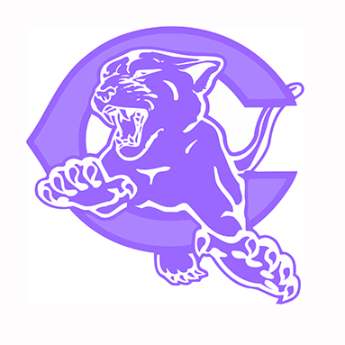Panther logo purple for Domestic Violence Awareness Month