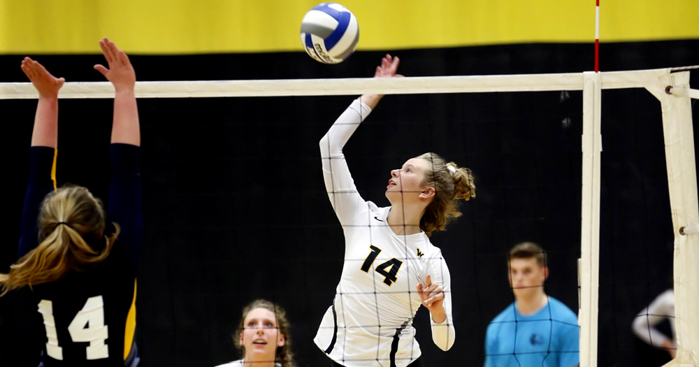 Leopards Extend Win Streak with 3-0 Sweep Over Anna Maria
