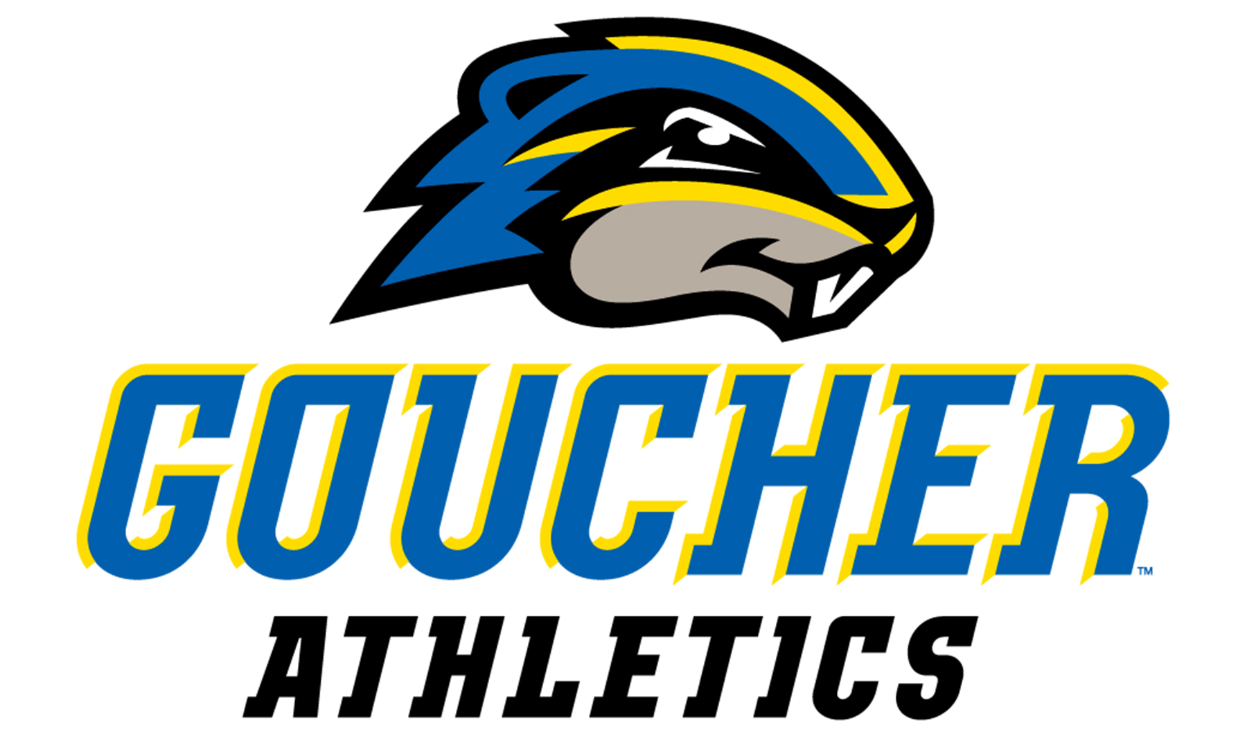 Goucher Student-Athletes Continue Excellence in the Classroom