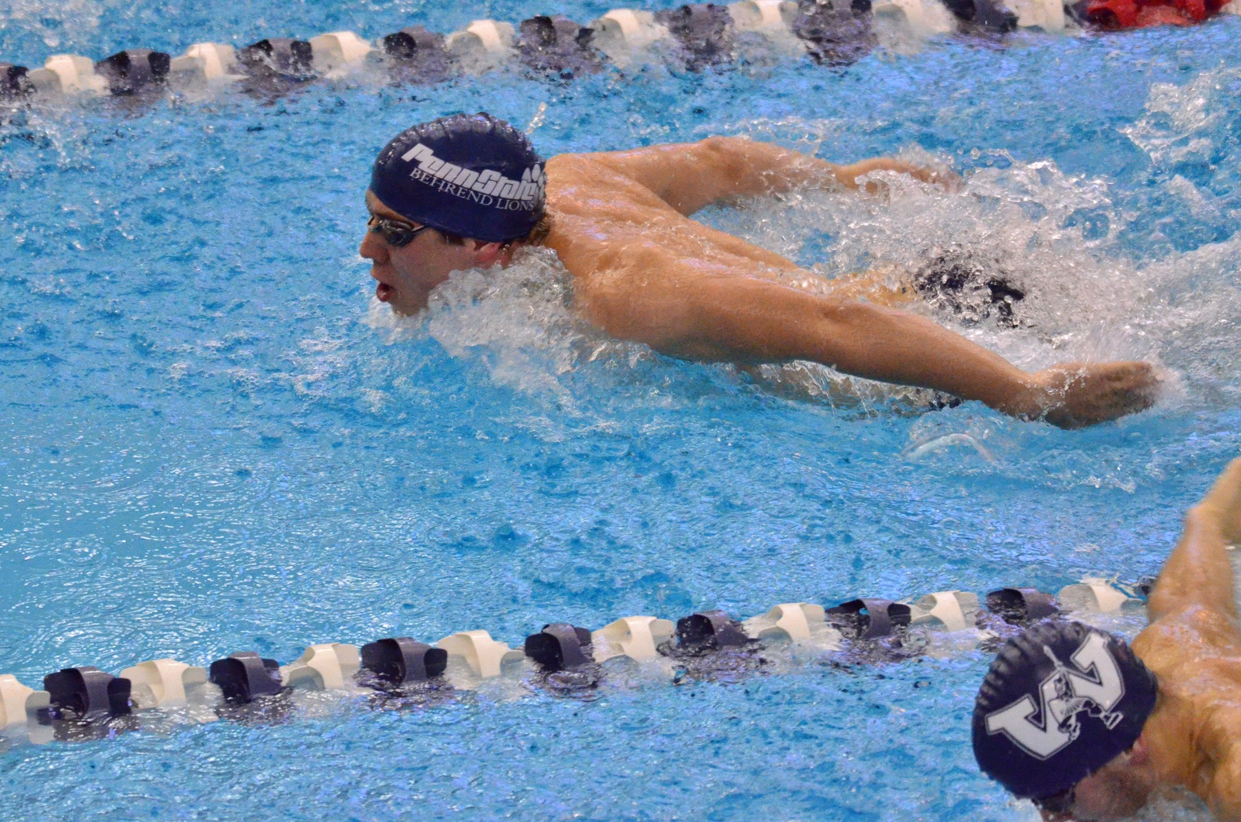 Westminster Nips Men's Swimming and Diving