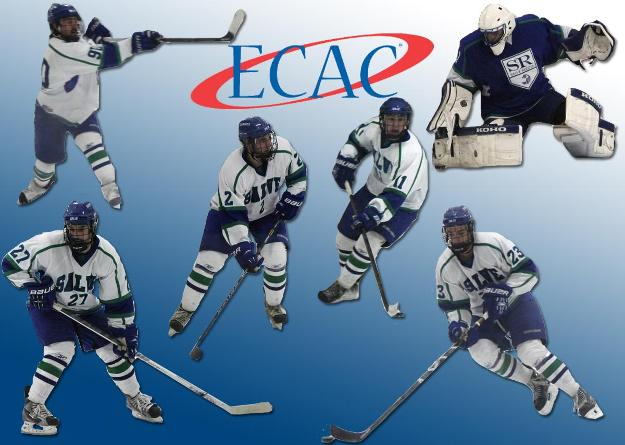 Saratoga adult hockey league